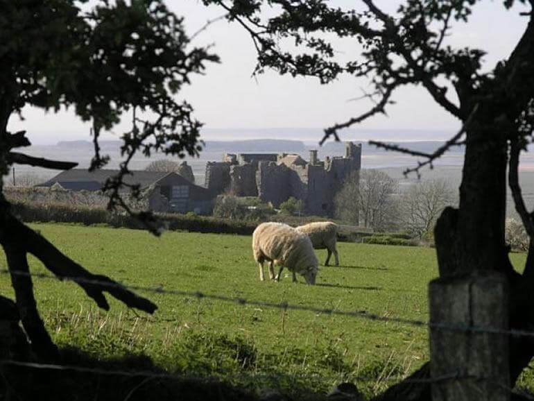 The Gower : Scurlage