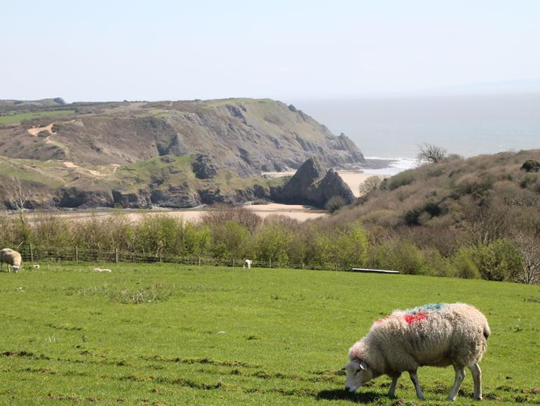 Gower Beaches : Three Cliffs Bay